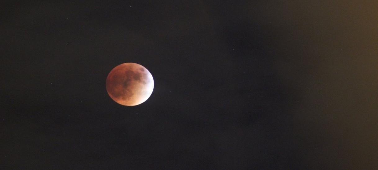 New Moon, NewNightmare